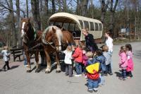 Kinderausflug mit der Kutsche, Foto: Reit- und Fahrtouristik Sander